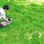 仕事をしていて、隣の芝生は青いという幻想を見るのはやめましょう