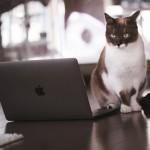 ブログを書くことで成長できる!ブログを書く7つのメリット