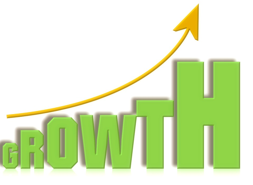 growth-1140534_960_720